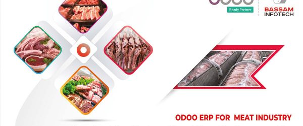 Best ERP Software for Meat Industry ERP implementation ERP software for meat processing industry