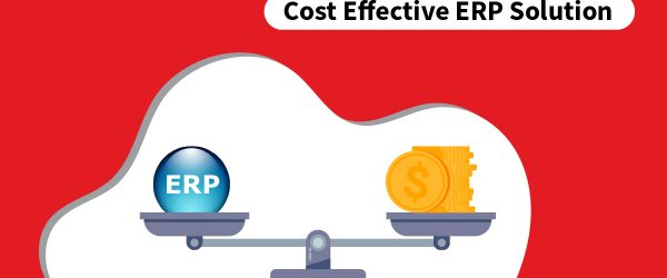 why-bassam-is-the-most-cost-effective-erp-solution-provider ERP Cost | Cost Effective ERP Solution | erp price | small business erp | best erp for small business | erp software for small business | erp software cost